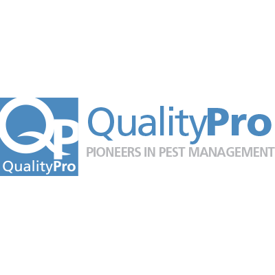 quality pro certification icon